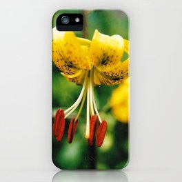 What's Up Tiger Lily? iPhone Case