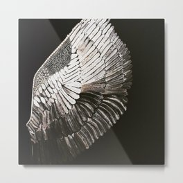 One Wing Metal Print