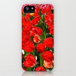 Tulips in Paris iPhone Case