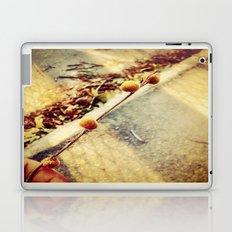 Nature Walk Laptop & iPad Skin