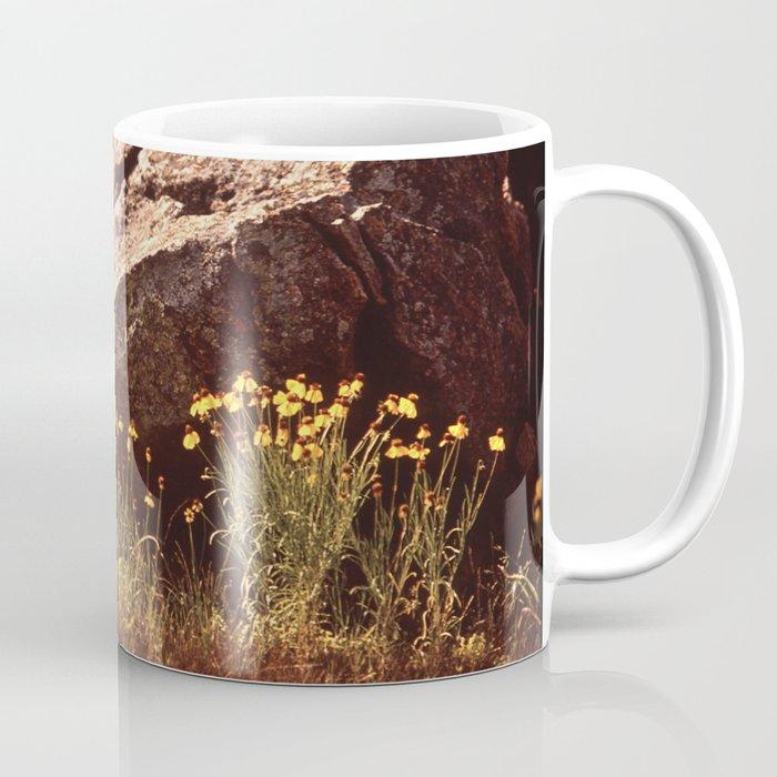 Central Texas - Near Lake Travis Coffee Mug