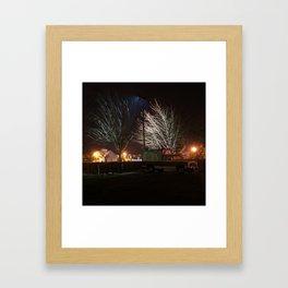 DSC01833 Framed Art Print