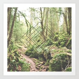 Puzzlewood Moss Forest Art Print