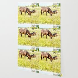 Horses Grazing in the Field.  Watercolor Painting Style. Wallpaper