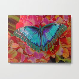 Extreme Blue Morpho Butterfly Metal Print