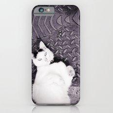 Animal :: Catfish Slim Case iPhone 6s