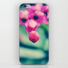 Sweet Flower iPhone & iPod Skin
