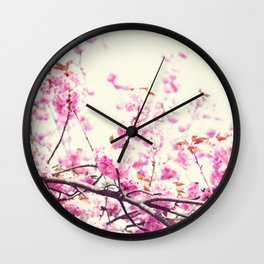 Pink cherry blossoms over white Wall Clock