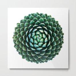 1000 Petal Cactus ~ Crown Chakra Metal Print