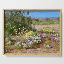 Painted_Desert 7285 - Johnson_Valley, California Serving Tray