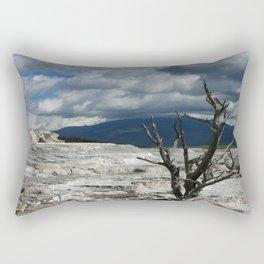 Minerva Spring and Terrace Rectangular Pillow