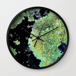 Shield Lichen Wall Clock