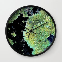 Shield Lichen Wall Clock