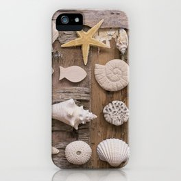 Treasures From The Beach iPhone Case