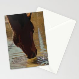 The Watering Hole  - Drinking Percheron Horse Stationery Cards