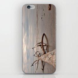 Dead Tree Bay iPhone Skin