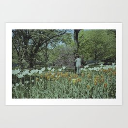 Brooklyn Botanic Garden Art Print