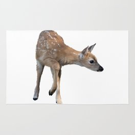 White-tailed deer fawn isolated on white background Rug
