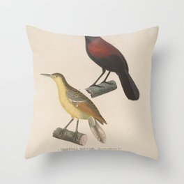 Northern Saddleback sitta otatare5 Throw Pillow