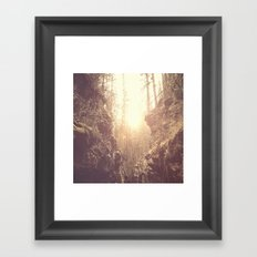 Forgotten Forest Framed Art Print