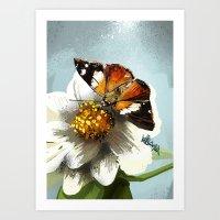 Butterfly on flower 12 Art Print