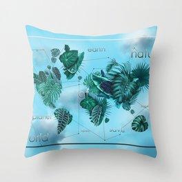 world map-world of nature 3 Throw Pillow
