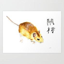 CHINESE ZODIAC (rat)  Art Print