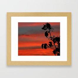 CandySkies Framed Art Print