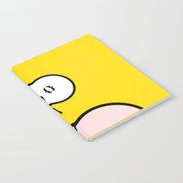 rip&loop Notebook