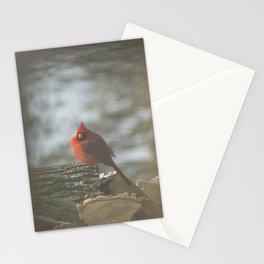 Winter's Cardinal Stationery Cards