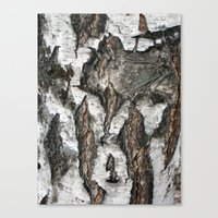 birch Canvas Prints featuring Birch by Sproot