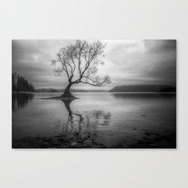 The Wanaka Tree Canvas Print