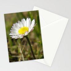 Daisy... Stationery Cards