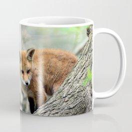 Fox cub exploring Coffee Mug