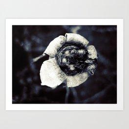 beautiful dead flower Art Print