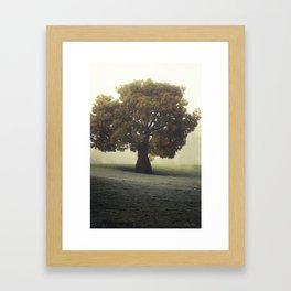 Winter Solitude Framed Art Print