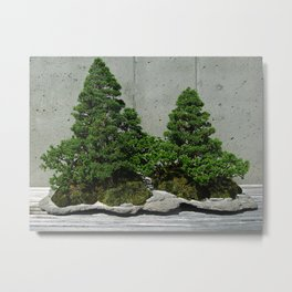 Basic Bonsai Metal Print