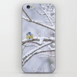 Blue Tit On A Snowy Branch Winter Scene #decor #society6 iPhone Skin