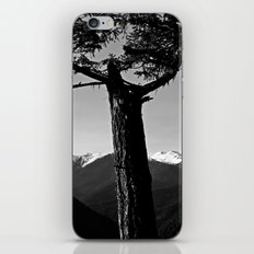 hurricane ridge . ii iPhone & iPod Skin