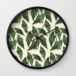 begonia maculata interior plant Wall Clock
