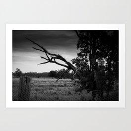Outback Australia, Gunnedah, NSW, Australia Art Print