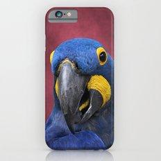 Cheeky Blue Hyacinth Macaw Slim Case iPhone 6s