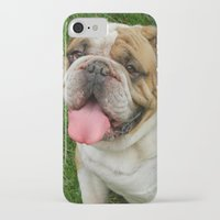 boxer iPhone & iPod Cases featuring Boxer by Tbuddsy