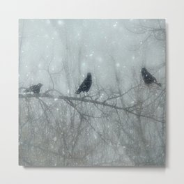 Wintry Crows Metal Print