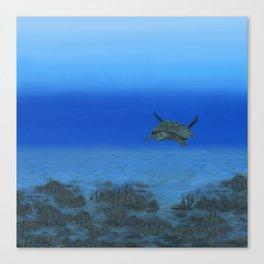 Peaceful Sea Turtle Canvas Print