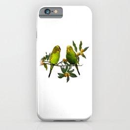 Budgies in Kumquat Tree iPhone Case