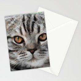 Cat by Mikhail Vasilyev Stationery Cards