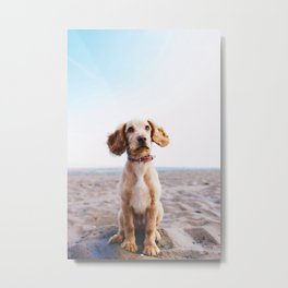 Man's Best Friend (Color) Metal Print