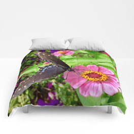 Butterfly on Pink Zinnia Comforters