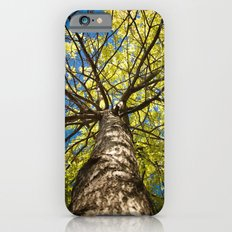 Blue and Green iPhone 6s Slim Case